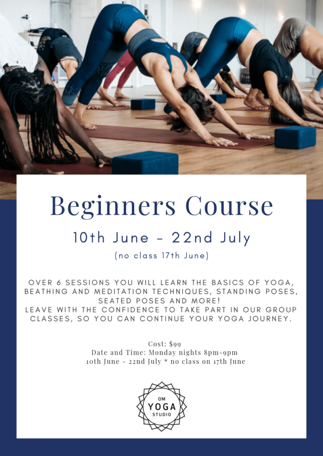 Beginners Course – June 2019